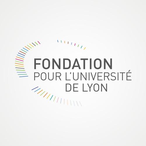Fondation pour l'université de Lyon - Graphic Swing